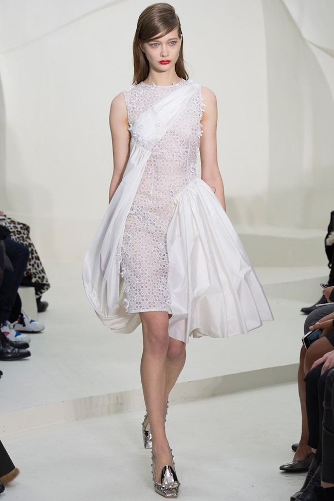PARIS HAUTE COUTURE Christian Dior Spring 2014. www.imageamplified.com, Image Amplified (38)