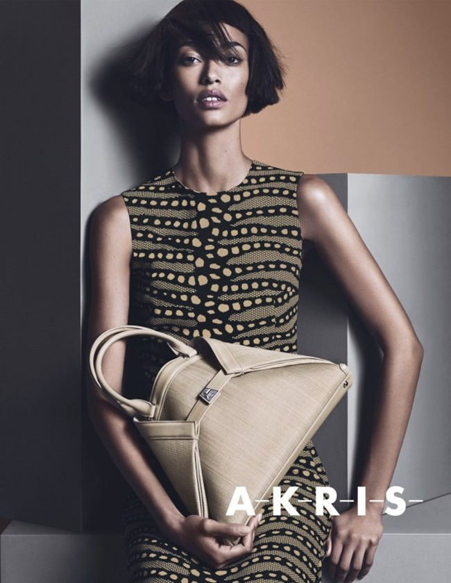 CAMPAIGN Anais Mali for Akris Spring 2014 by Lachlan Bailey. Spela Lenarcic, www.imageamplified.com, Image amplified (7)