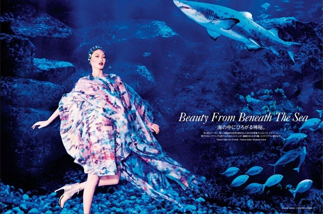 VOGUE JAPAN Chiharu Okunugi in Beauty From Beneath The Sea by Ellen von Unwerth. Elizabeth Sulcer, April 2014, www.imageamplified.com, Image Amplified (2)