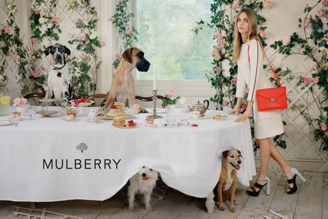 CAMPAIGN Cara Delevigne for Mulberry Spring 2014 by Tim Walker. Edward Enninful, www.imageamplified.com, Image Amplified (1)