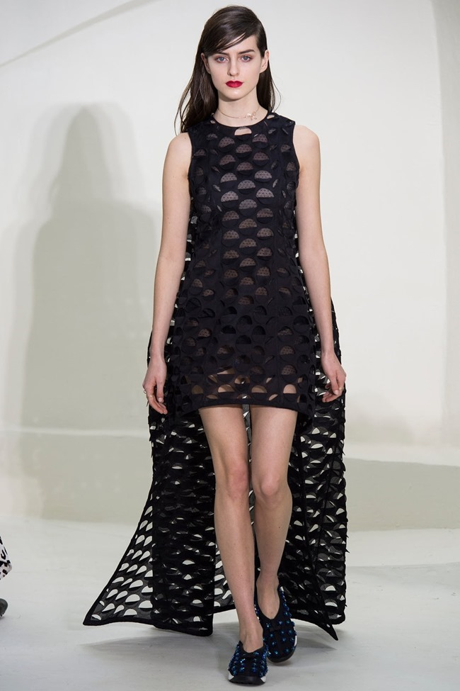 PARIS HAUTE COUTURE Christian Dior Spring 2014. www.imageamplified.com, Image Amplified (10)