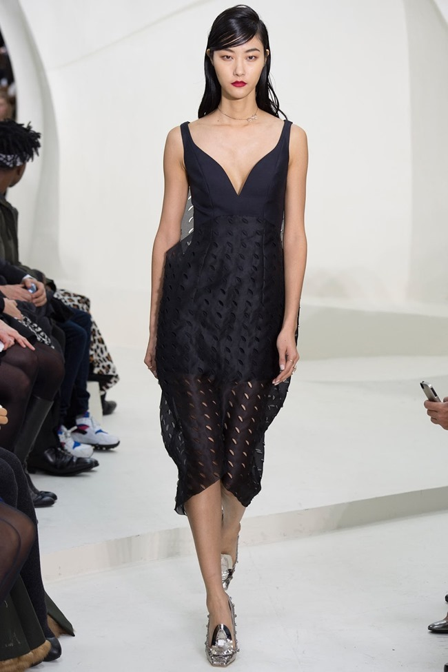 PARIS HAUTE COUTURE Christian Dior Spring 2014. www.imageamplified.com, Image Amplified (52)