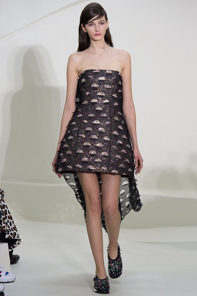 PARIS HAUTE COUTURE Christian Dior Spring 2014. www.imageamplified.com, Image Amplified (11)