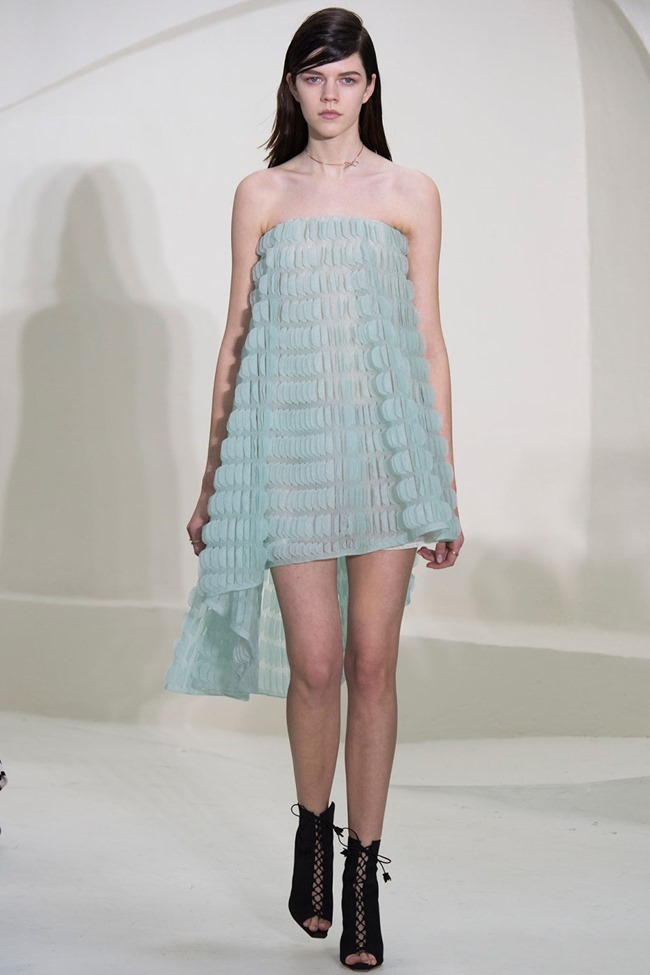 PARIS HAUTE COUTURE Christian Dior Spring 2014. www.imageamplified.com, Image Amplified (15)