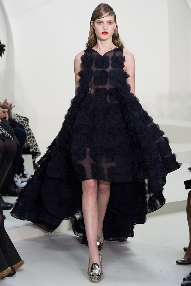 PARIS HAUTE COUTURE Christian Dior Spring 2014. www.imageamplified.com, Image Amplified (19)