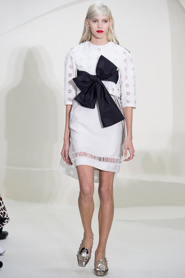PARIS HAUTE COUTURE Christian Dior Spring 2014. www.imageamplified.com, Image Amplified (36)
