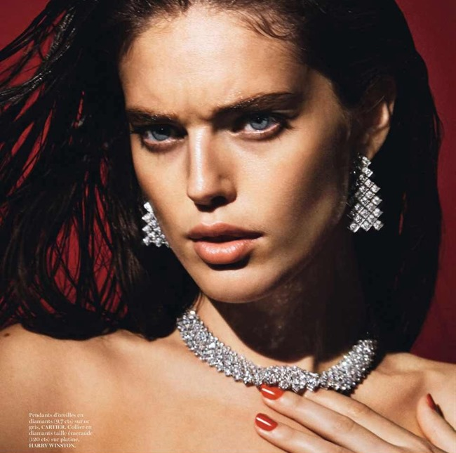 VOGUE PARIS Emily DiDonato by David Sims. Emmanuelle alt, February 2014, www.imageamplified.com, Image Amplified (5)