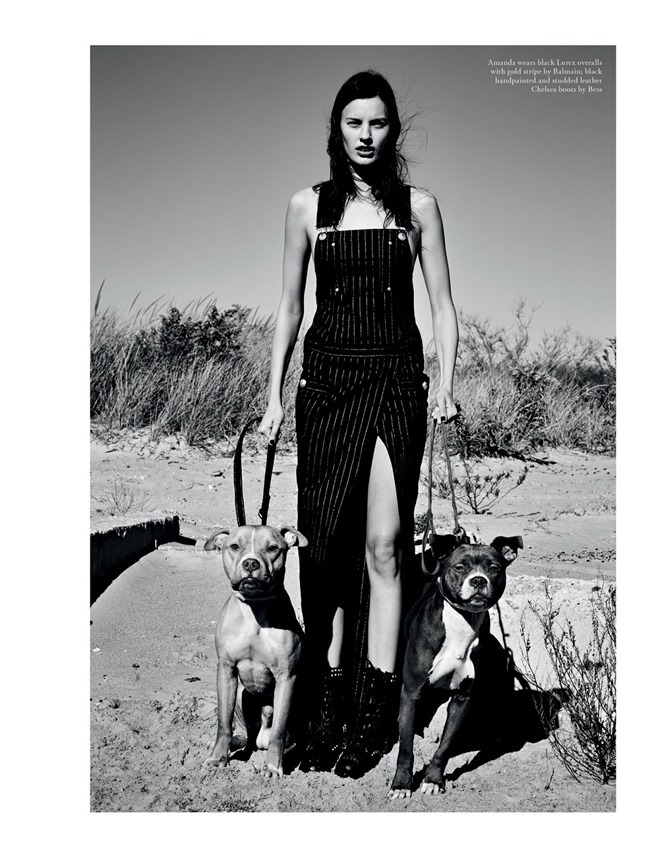 LOVE MAGAZINE Collection by Patrick Demarchelier. Tabitha Simmons, Spring 2014, www.imageamplified.com, Image Amplified (20)