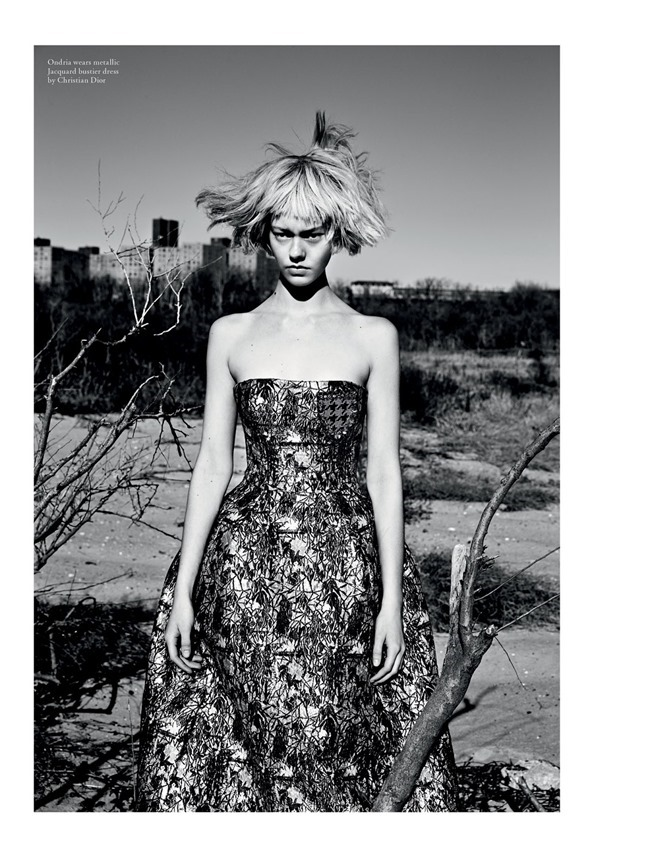 LOVE MAGAZINE Collection by Patrick Demarchelier. Tabitha Simmons, Spring 2014, www.imageamplified.com, Image Amplified (1)
