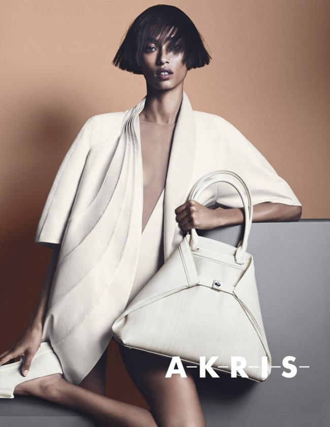 CAMPAIGN Anais Mali for Akris Spring 2014 by Lachlan Bailey. Spela Lenarcic, www.imageamplified.com, Image amplified (5)
