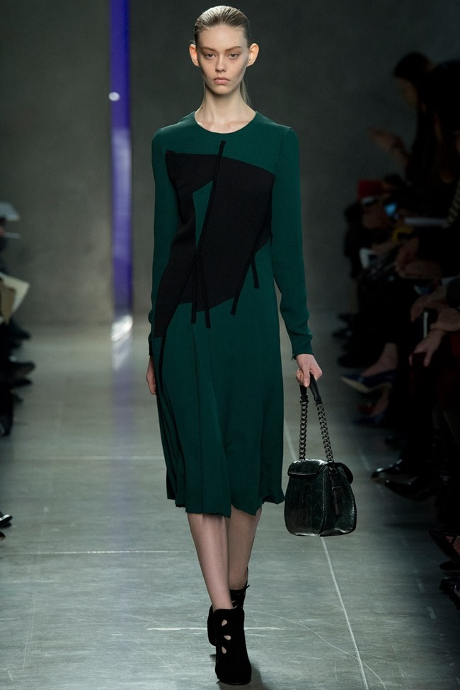 MILAN FASHION WEEK Bottega Veneta RTW Fall 2014. www.imageamplified.com, Image Amplified (16)