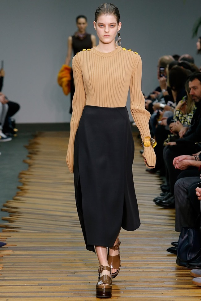 PARIS FASHION WEEK Celine RTW Fall 2014. www.imageamplified.com, Image Amplified (30)