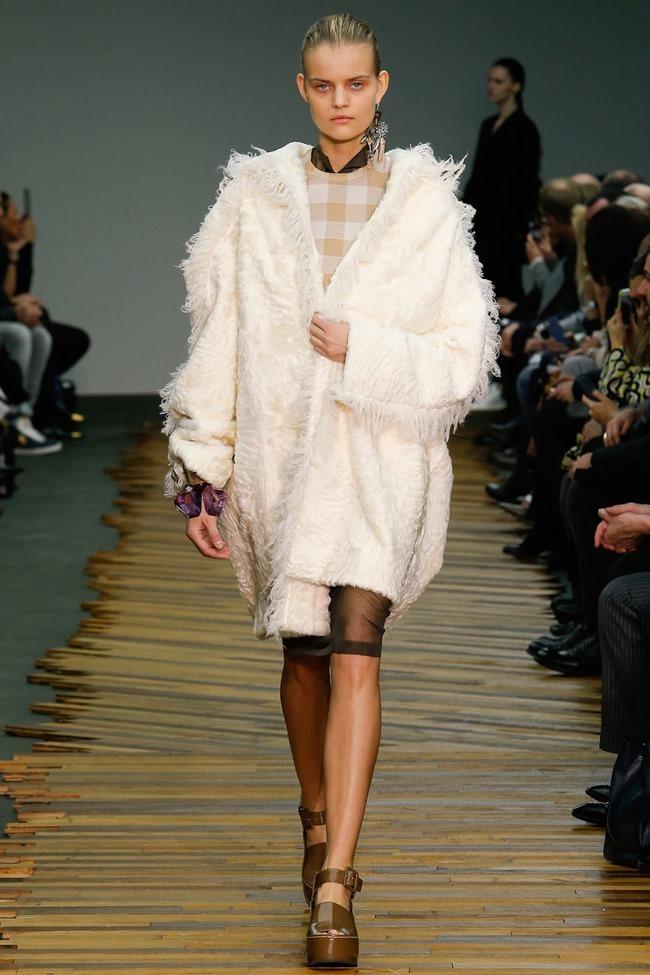 PARIS FASHION WEEK Celine RTW Fall 2014. www.imageamplified.com, Image Amplified (36)