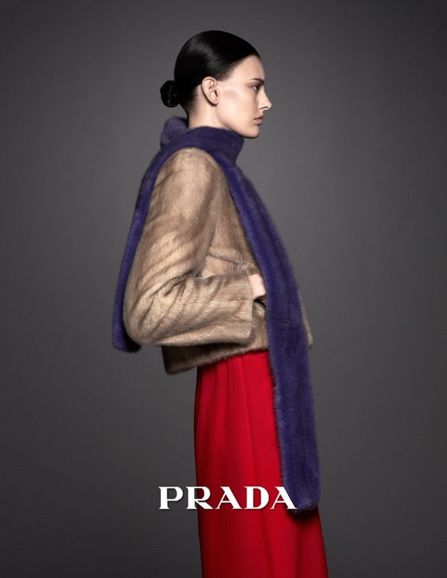CAMPAIGN Amanda Murphy for Prada Pre-Fall 2014. www.imageamplified.com, Image Amplified (2)