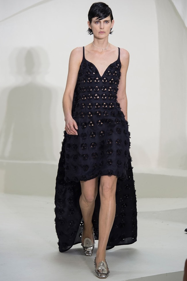 PARIS HAUTE COUTURE Christian Dior Spring 2014. www.imageamplified.com, Image Amplified (1)