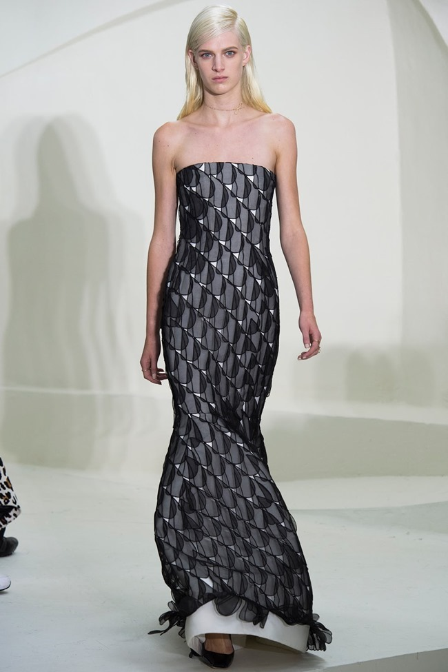 PARIS HAUTE COUTURE Christian Dior Spring 2014. www.imageamplified.com, Image Amplified (31)