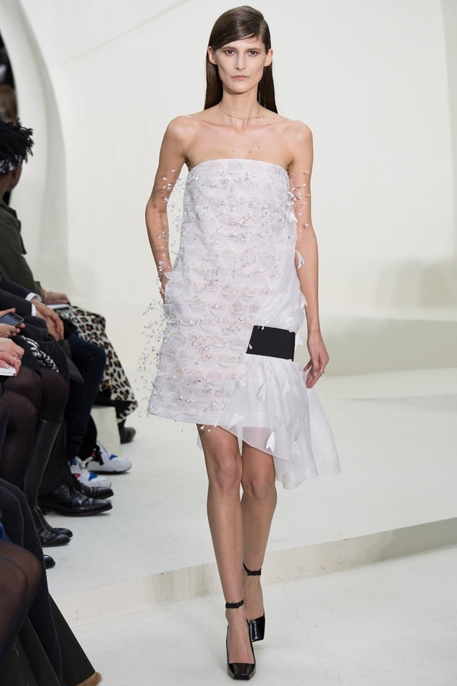PARIS HAUTE COUTURE Christian Dior Spring 2014. www.imageamplified.com, Image Amplified (39)