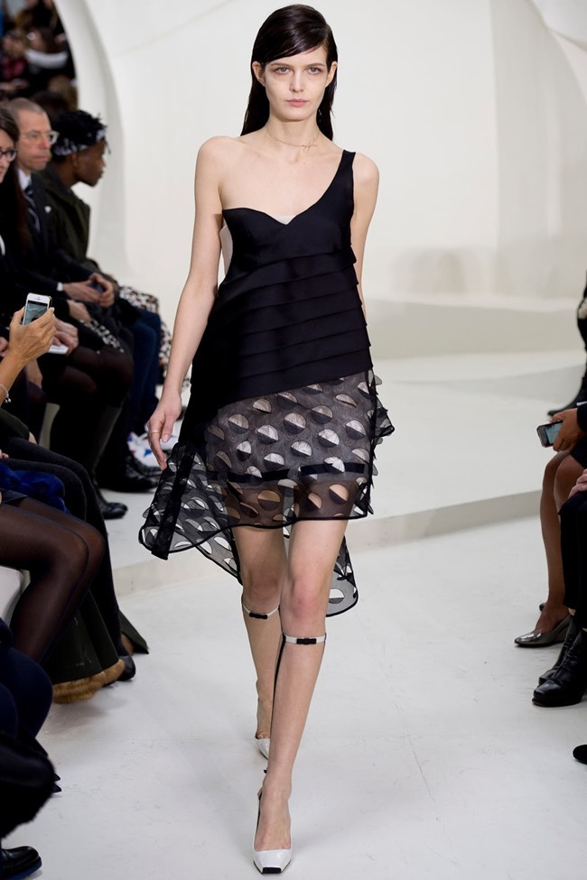 PARIS HAUTE COUTURE Christian Dior Spring 2014. www.imageamplified.com, Image Amplified (42)