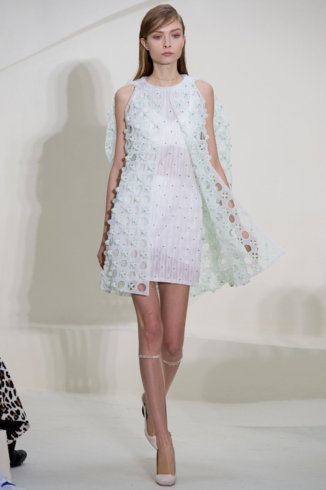 PARIS HAUTE COUTURE Christian Dior Spring 2014. www.imageamplified.com, Image Amplified (43)