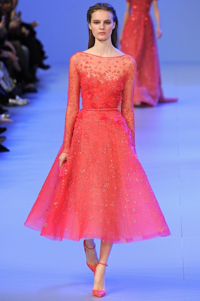 PARIS HAUTE COUTURE Elie Saab Spring 2014. www.imageamplified.com, Image Amplified (16)
