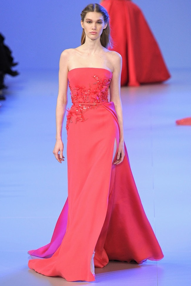 PARIS HAUTE COUTURE Elie Saab Spring 2014. www.imageamplified.com, Image Amplified (19)