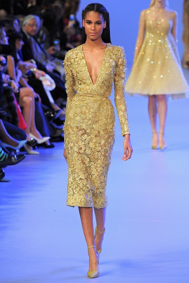 PARIS HAUTE COUTURE Elie Saab Spring 2014. www.imageamplified.com, Image Amplified (24)