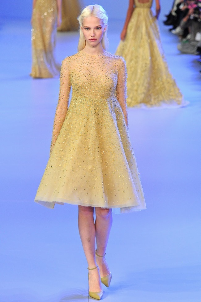 PARIS HAUTE COUTURE Elie Saab Spring 2014. www.imageamplified.com, Image Amplified (25)