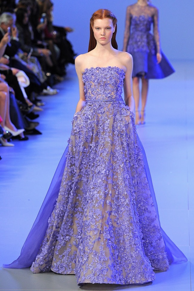PARIS HAUTE COUTURE Elie Saab Spring 2014. www.imageamplified.com, Image Amplified (35)