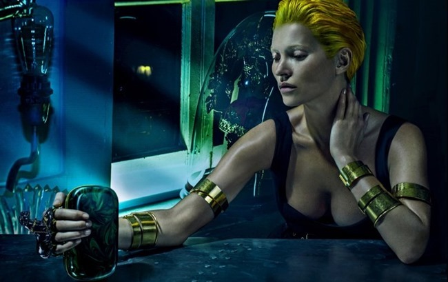 CAMPAIGN Kate Moss for Alexander McQueen Spring 2014 by Steven Klein. www.imageamplified.com, Image amplified (2)