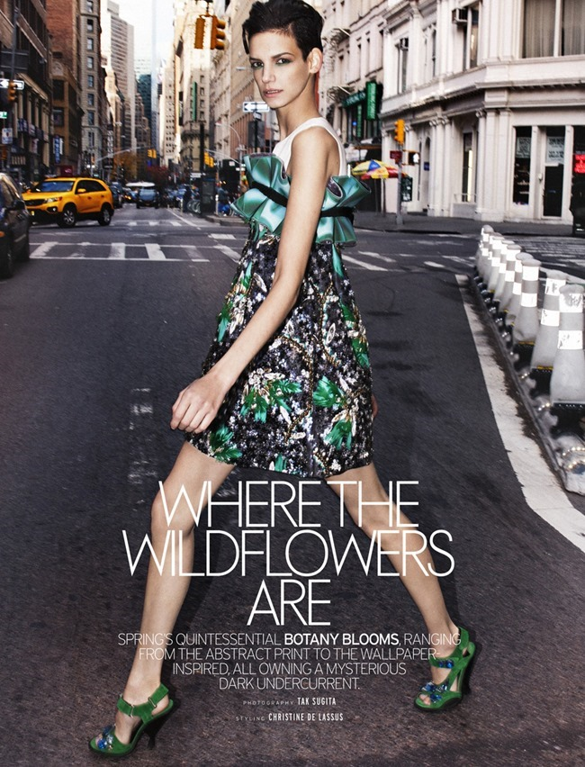 ELLE SINGAPORE JP in Where The Wildflowers Are by Tak Sugita. Christine De Lassus, February 2014, www.imageamplified.com, Image amplified (4)