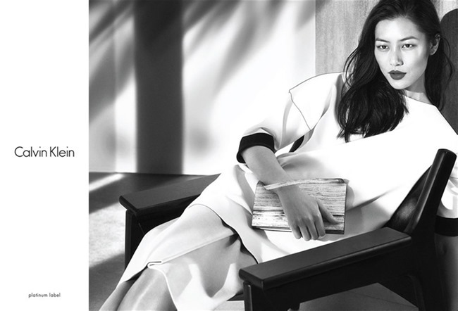 CAMPAIGN Liu Wen & Tim Schuhmacher for Calvin Klein Platinum Spring 2014. www.imageamplified.com, Image amplified (1)