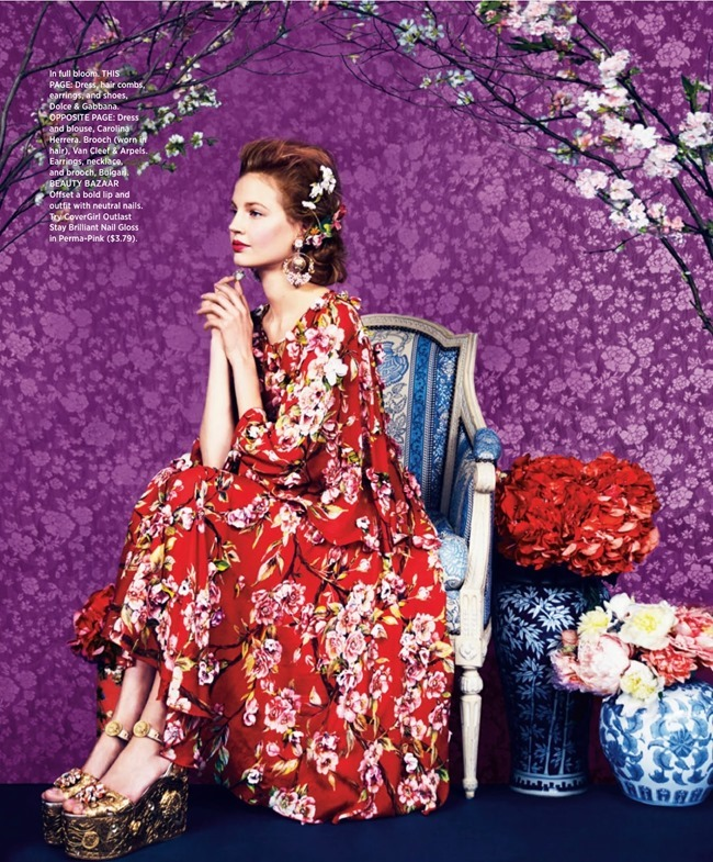 HARPER'S BAZAAR MAGAZINE Elisabeth Erm in Prints Of The Season by Erik Madigan Heck. Joanna Hillman, March 2014, www.imageamplified.com, Image Amplified (3)