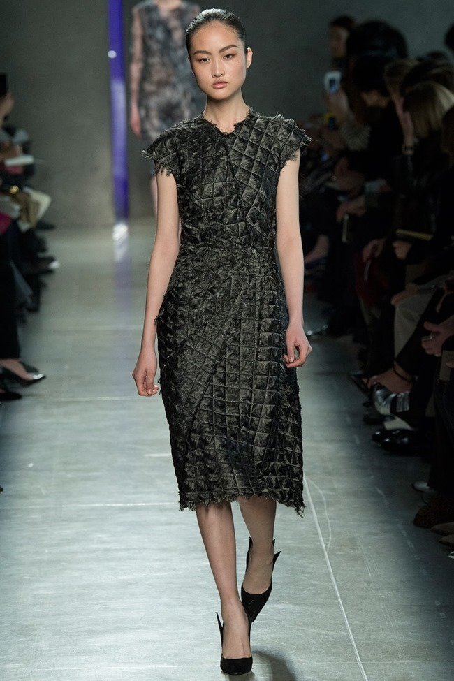 MILAN FASHION WEEK Bottega Veneta RTW Fall 2014. www.imageamplified.com, Image Amplified (24)