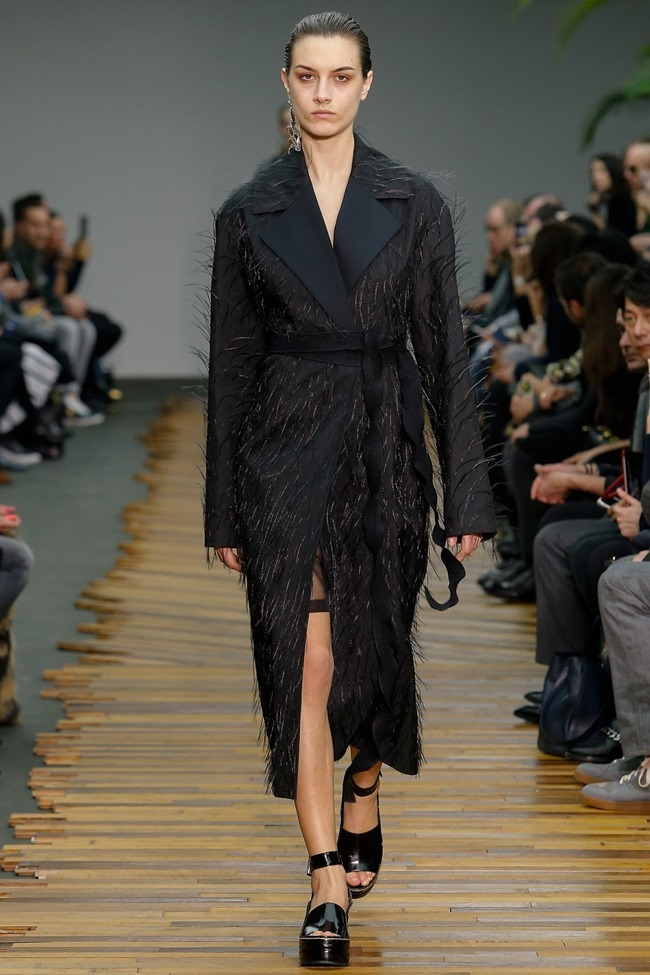 PARIS FASHION WEEK Celine RTW Fall 2014. www.imageamplified.com, Image Amplified (41)