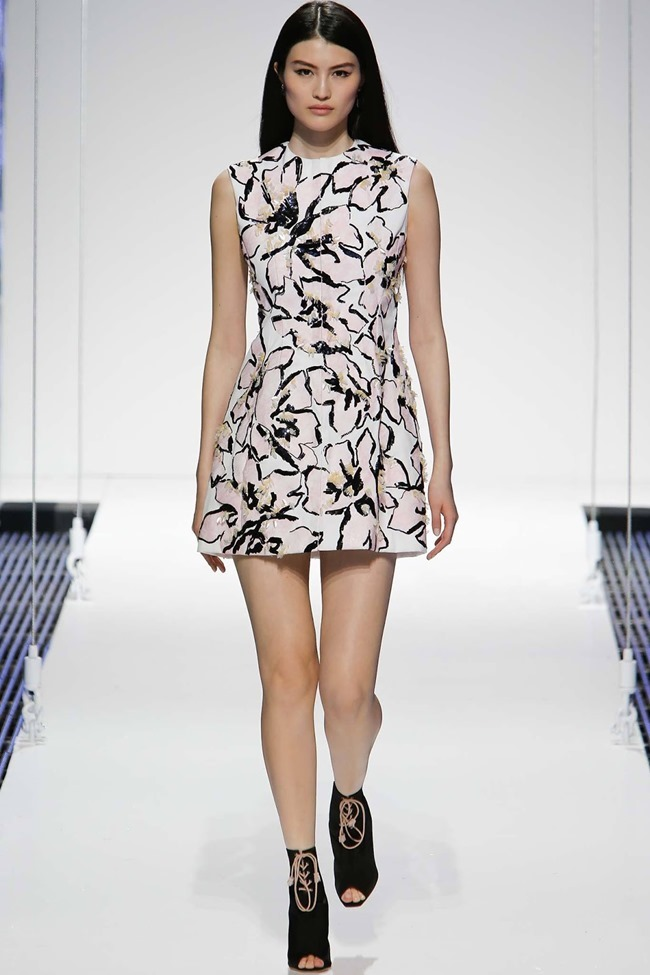 COLLECTION Christian Dior Resort 2015. www.imageamplified.com, Image Amplified (6)