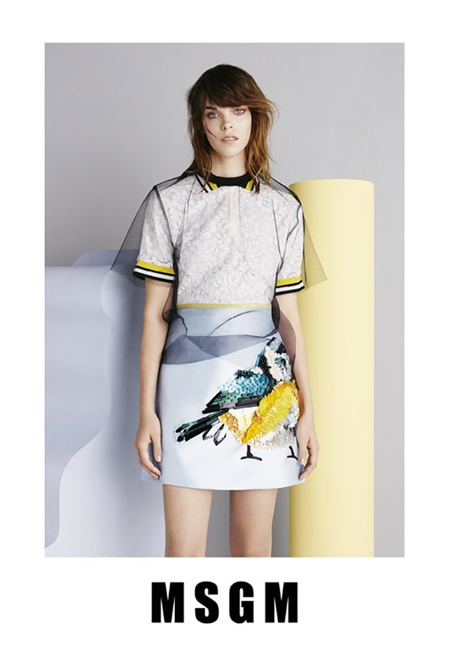 CAMPAIGN Meghan Collison for MSGM Spring 2015 by Ben Toms. www.imageamplified.com, Image Amplified (3)