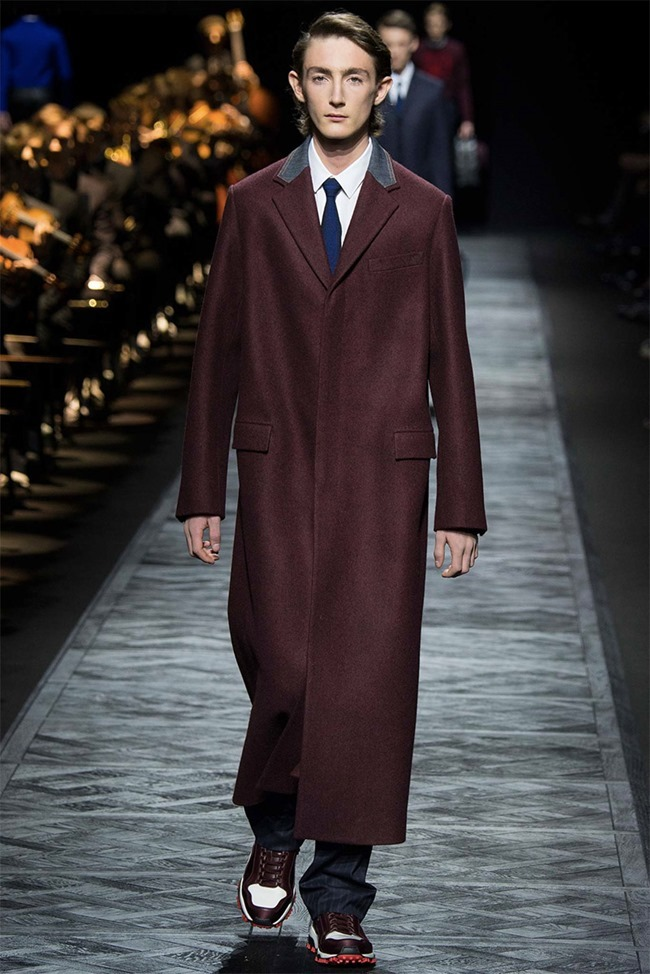 PARIS FASHION WEEK Dior Homme Fall 2015. www.imageamplified.com, Image Amplified (17)