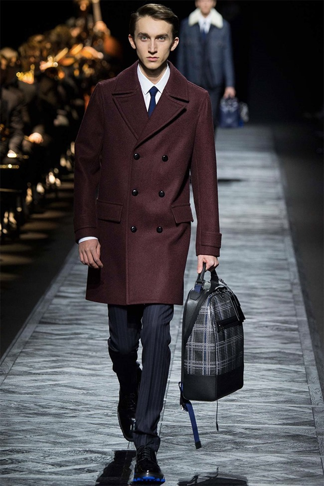 PARIS FASHION WEEK Dior Homme Fall 2015. www.imageamplified.com, Image Amplified (21)