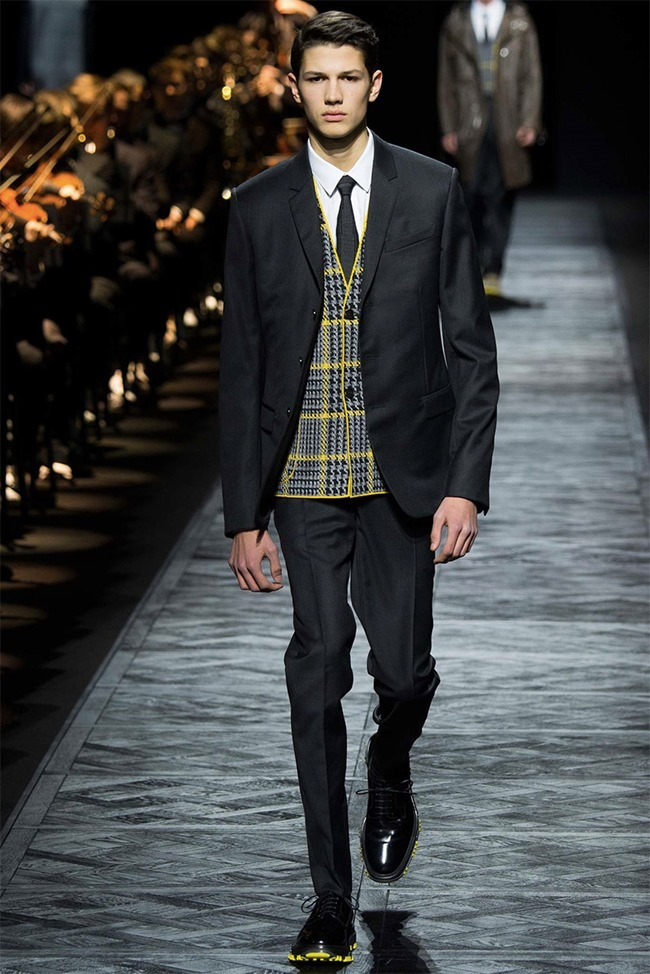 PARIS FASHION WEEK Dior Homme Fall 2015. www.imageamplified.com, Image Amplified (32)