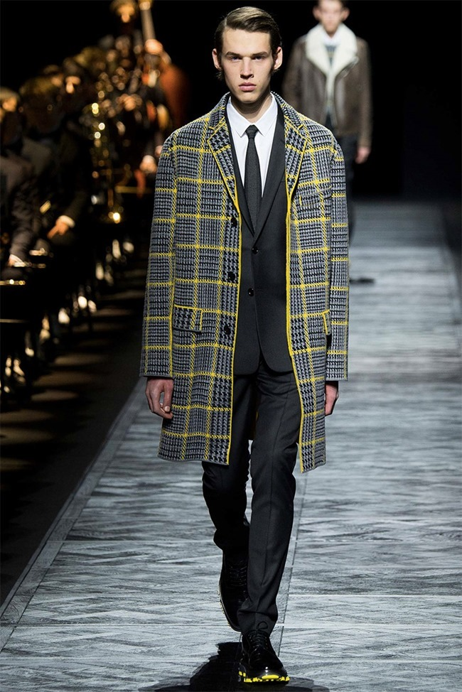 PARIS FASHION WEEK Dior Homme Fall 2015. www.imageamplified.com, Image Amplified (34)