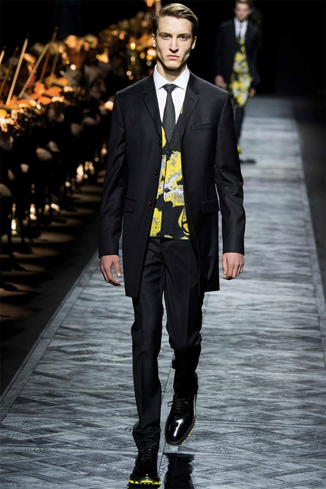 PARIS FASHION WEEK Dior Homme Fall 2015. www.imageamplified.com, Image Amplified (42)