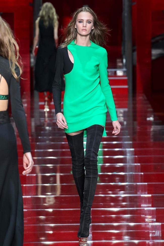 MILAN FASHION WEEK Versace Fall 2015. www.imageamplified.com, Image Amplified (40)