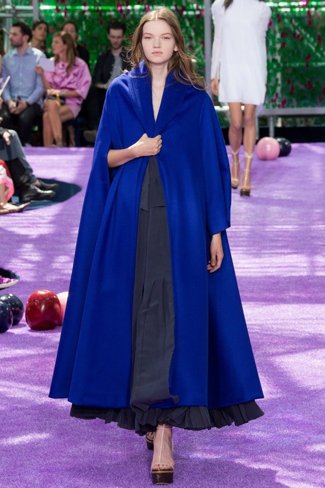 PARIS HAUTE COUTURE Dior Fall 2015. www.imageamplified.com, Image Amplified (10)
