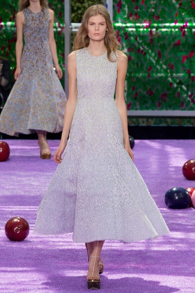 PARIS HAUTE COUTURE Dior Fall 2015. www.imageamplified.com, Image Amplified (14)