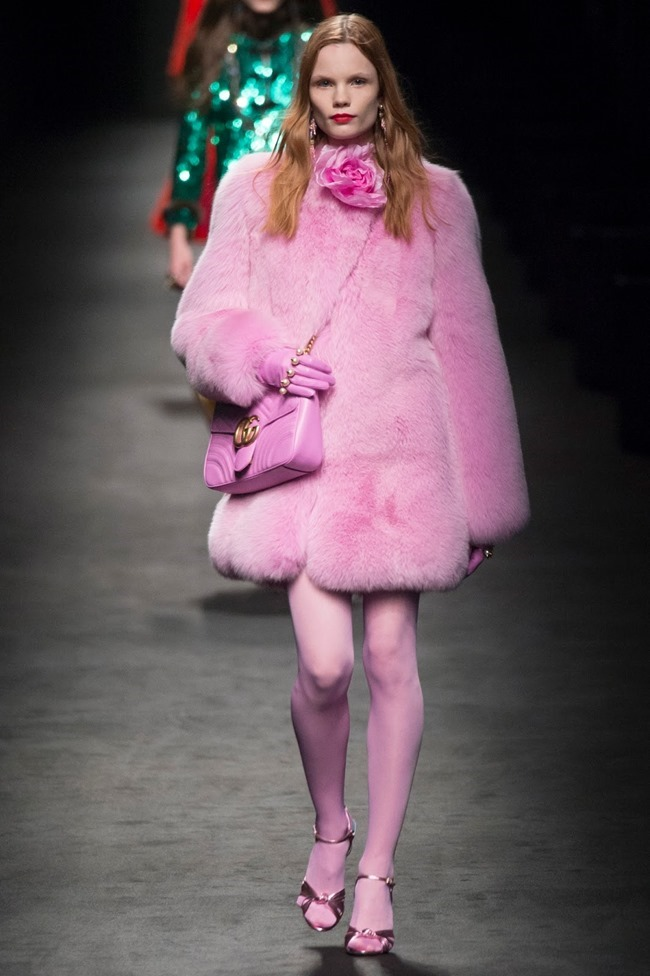 MILAN FASHION WEEK Gucci Fall 2016. www.imageamplified.com, Image Amplified (2)