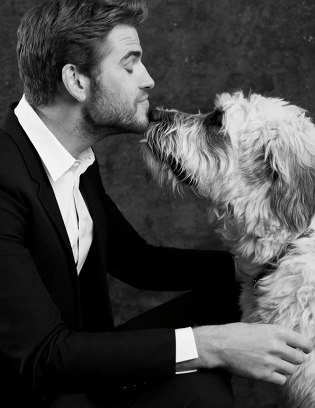 LEGEND MAGAZINE Liam Hemsworth by Eric Michael Roy. Paris Libby, Spring 2016, www.imageamplified.com, image Amplified (6)