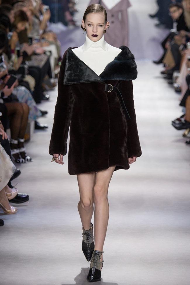 PARIS FASHION WEEK Christian Dior Fall 2016. www.imageamplified.com, Image Amplified (20)
