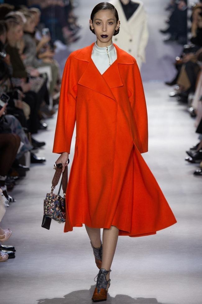 PARIS FASHION WEEK Christian Dior Fall 2016. www.imageamplified.com, Image Amplified (47)