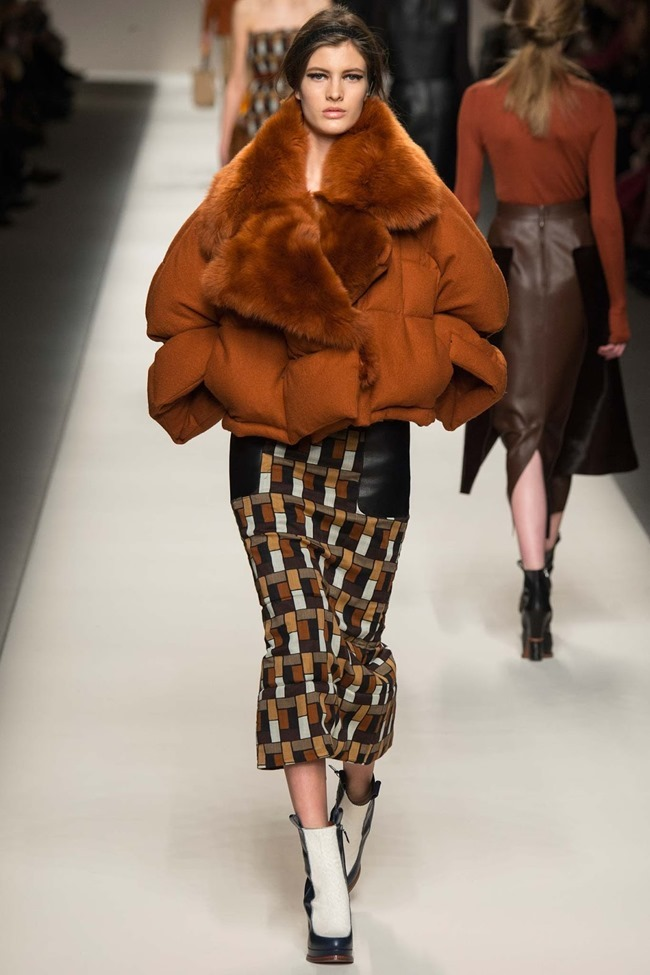 MILAN FASHION WEEK Fendi Fall 2015. www.imageamplified.com, Image Amplified (21)