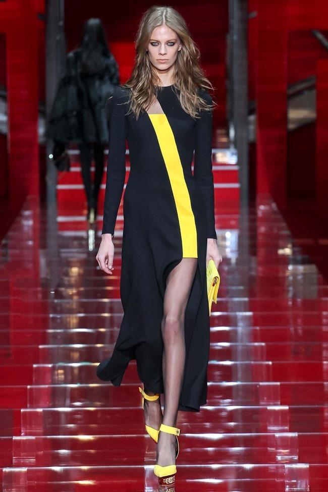 MILAN FASHION WEEK Versace Fall 2015. www.imageamplified.com, Image Amplified (37)